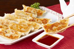 焼き餃子 Japanese Pan-Fried Dumplingsの写真素材 [FYI04661477]