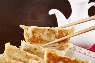 焼き餃子 Japanese Pan-Fried Dumplingsの写真素材 [FYI04661489]