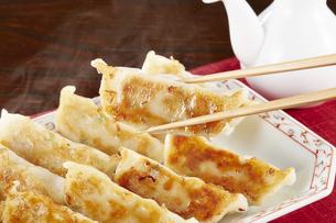 焼き餃子 Japanese Pan-Fried Dumplingsの写真素材 [FYI04661492]