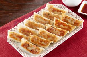 焼き餃子 Japanese Pan-Fried Dumplingsの写真素材 [FYI04661495]