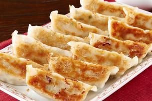 焼き餃子(Japanese Pan-Fried Dumplings) 2人前の写真素材 [FYI04661497]