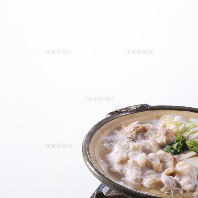 鍋料理の写真素材 [FYI04661634]