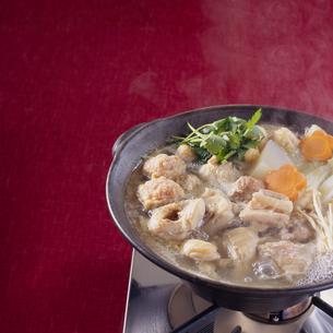 水炊き-寄せ鍋の写真素材 [FYI04661644]