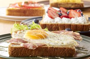 オープンサンドイッチ (open sandwich)の写真素材 [FYI04661913]