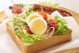 オープンサンドイッチ (open sandwich)の写真素材 [FYI04661917]