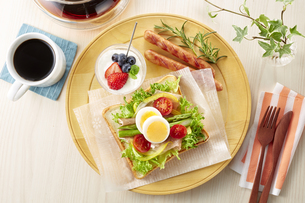 オープンサンドイッチ (open sandwich)の写真素材 [FYI04661931]