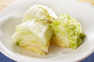 白菜の浅漬け (pickled napa cabbage)の写真素材 [FYI04662002]