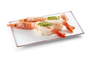 有頭生海老の握り寿司 (raw shrimp)の写真素材 [FYI04662290]