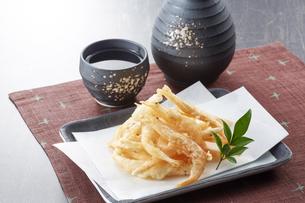 白えびの天ぷら お酒の写真素材 [FYI04662322]