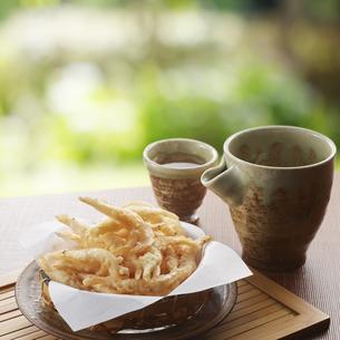 富山湾で獲れた白エビの天ぷらの写真素材 [FYI04662328]