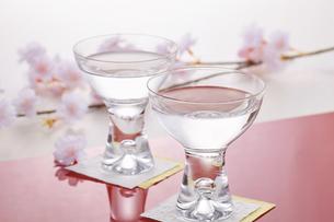 花見酒イメージの写真素材 [FYI04662504]