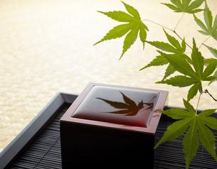 日本酒-青紅葉の写真素材 [FYI04662521]