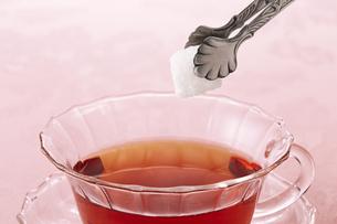 紅茶と砂糖の写真素材 [FYI04662594]