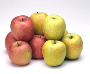 少量の赤リンゴと青リンゴの写真素材 [FYI04662698]