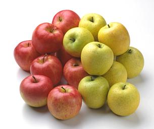 たくさんの赤リンゴと青リンゴの写真素材 [FYI04662701]