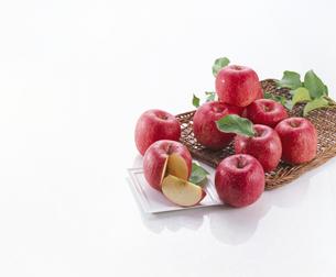 りんごの写真素材 [FYI04662706]