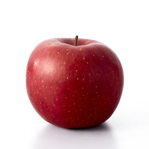 りんご-サンふじ-sunfujiの写真素材 [FYI04662712]