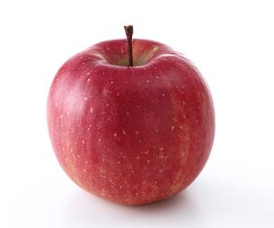 普通のリンゴの写真素材 [FYI04662714]