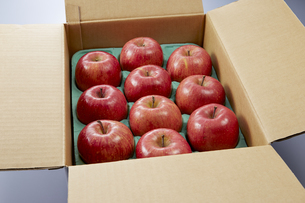 りんご箱の写真素材 [FYI04662717]