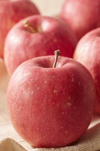 麻布にノーブランドのリンゴの写真素材 [FYI04662733]
