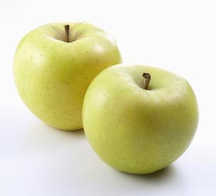 りんご(王林)の写真素材 [FYI04662735]