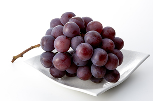 Pione (grape) isolated on white backgroundの写真素材 [FYI04662813]