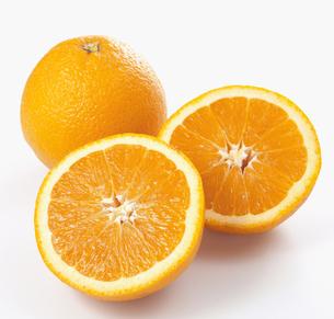 オレンジの写真素材 [FYI04662904]