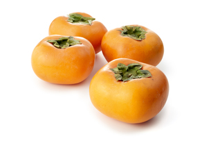 利根柿 (Japanese persimmon)の写真素材 [FYI04662942]