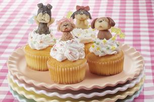 カップケーキにマジパンでつくったわんこを乗せての写真素材 [FYI04663005]