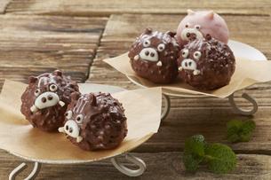 チョコレート 亥 いのしし (Boar type chocolate)の写真素材 [FYI04663063]