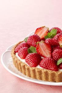 甘酸っぱい苺のレアチーズタルトの写真素材 [FYI04663377]