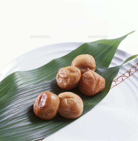 梅干し Umeboshi(pickled plum)の写真素材 [FYI04663396]