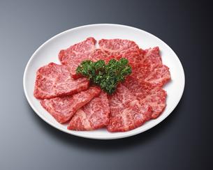 牛焼肉の写真素材 [FYI04663541]