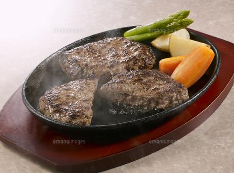 ハンバーグステーキの写真素材 [FYI04663772]