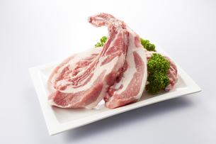 豚スペアリブ (pork spare ribs)の写真素材 [FYI04663900]