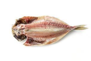 あじ開き (dried house mackerel)の写真素材 [FYI04664049]