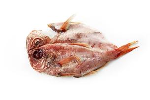 金目鯛の一夜干し (dried Red snapper)の写真素材 [FYI04664067]