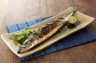 秋刀魚の塩焼き (grilled pacific saury fish with salt)の写真素材 [FYI04664119]