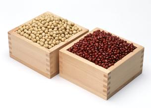 大豆とあずきのセットの写真素材 [FYI04664514]