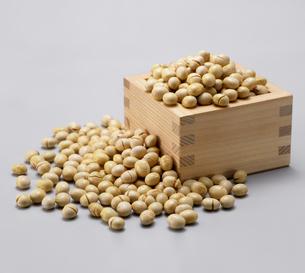 炒り大豆の写真素材 [FYI04664712]