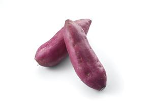 鳴門金時 (sweet potato grown in sandy soil)の写真素材 [FYI04664887]