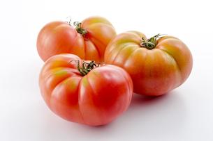 無農薬で育てた有機栽培トマトの写真素材 [FYI04664930]