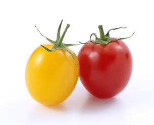赤と黄色のプチトマトの写真素材 [FYI04664935]