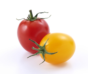 赤と黄色のプチトマトの写真素材 [FYI04664941]
