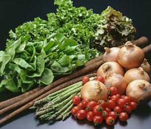 野菜集合の写真素材 [FYI04664979]