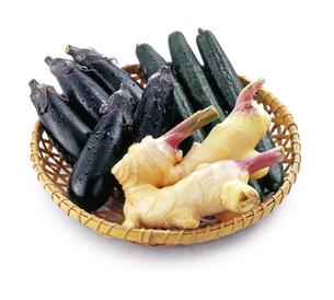 茄子と生姜ときゅうりの写真素材 [FYI04664985]