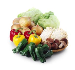緑黄色野菜の写真素材 [FYI04664989]