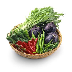 京野菜盛り合わせの写真素材 [FYI04664990]