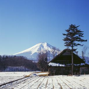 1970年代よりも前に撮影した富士山の風景の写真素材 [FYI04665083]