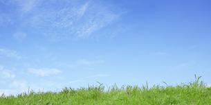 草原と空の写真素材 [FYI04665277]